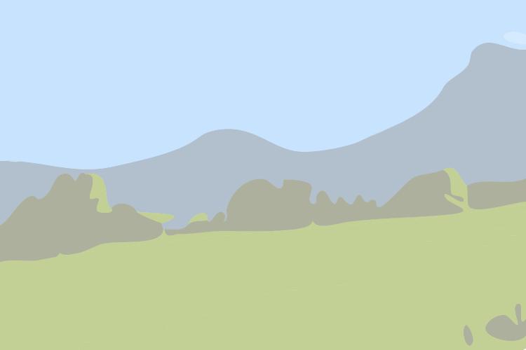 image du poi